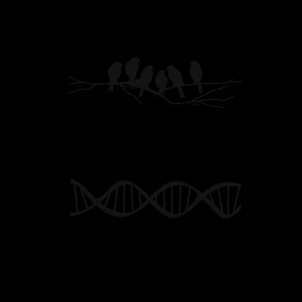 BÖÖL (Biology)
